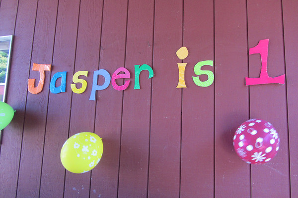 Jasper's 1st Birthday