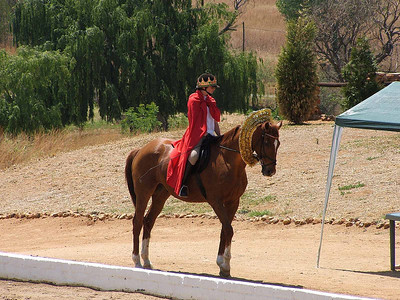 Sarah on A Horse (1)  I don't know the full details on the following photos, other than what I can see. Sarah on a horse dressed as some sort of combination of Superman and a King/Queen