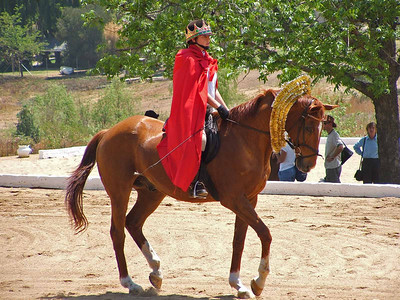 Sarah on A Horse (2)  Another of Sarah on a horse dressed as some sort of combination of Superman and a King/Queen
