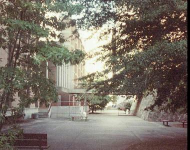1983 Fall Beth at UTK