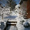 Snow_018