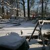 Snow_010