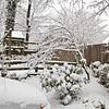 Snow_007