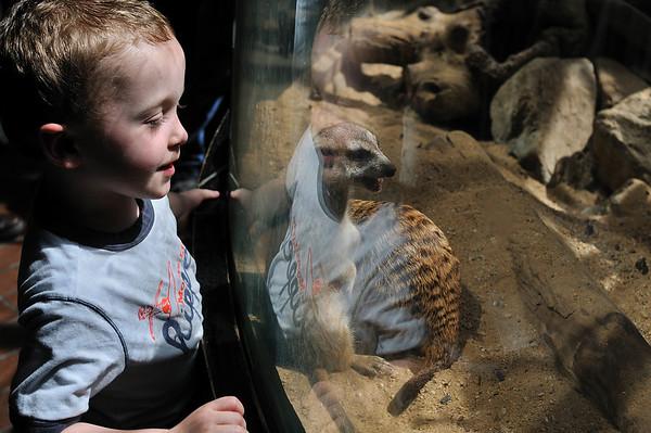 2009 - Nat'l Zoo