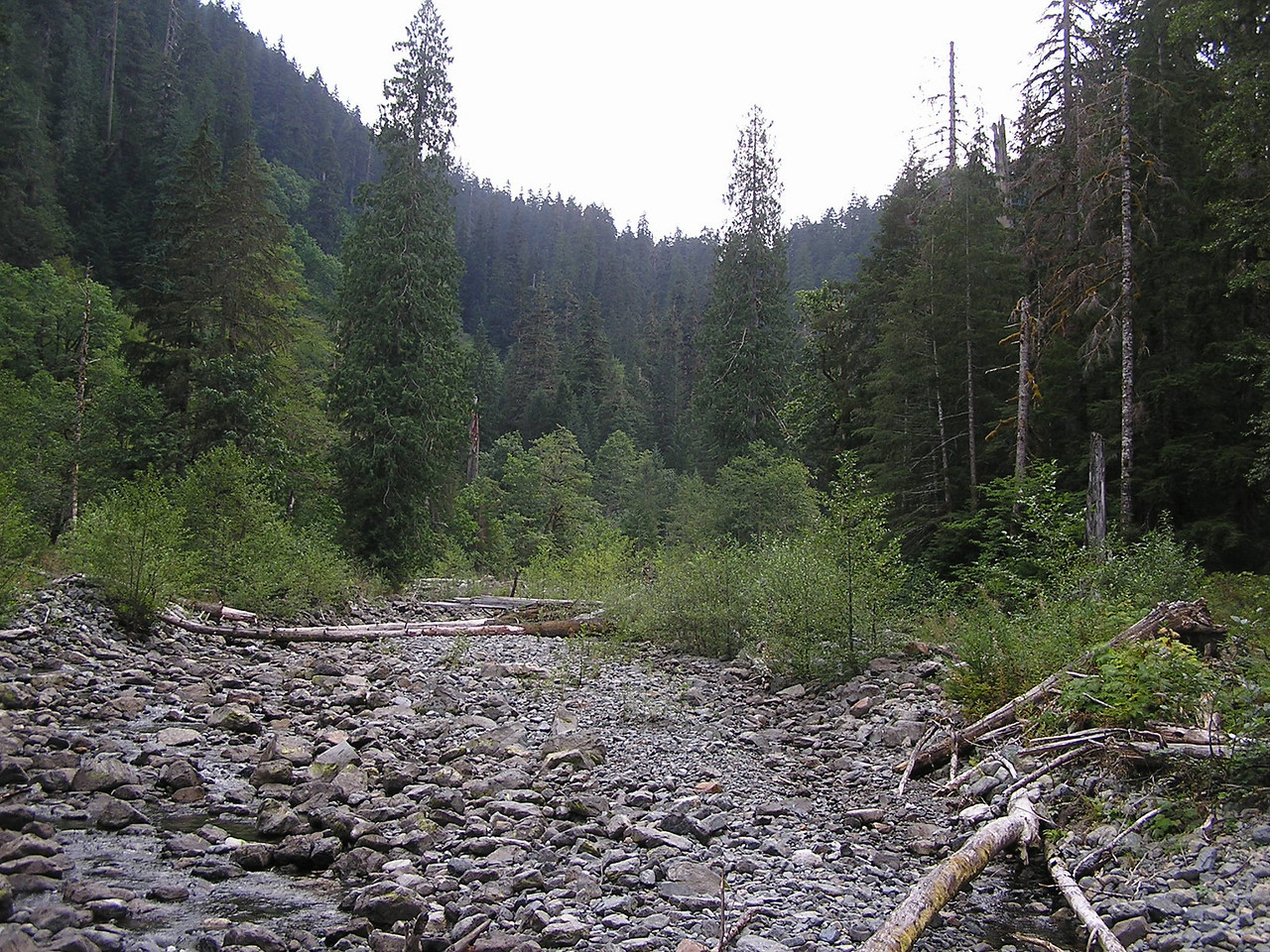 04-08-16 Hike to Trout Lake 043