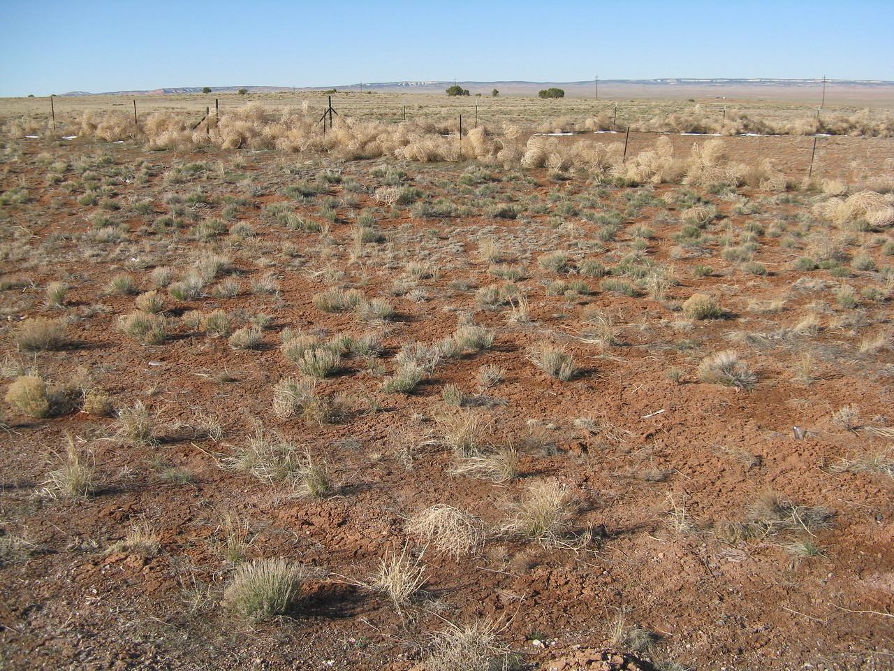 Still more sage brush desert.