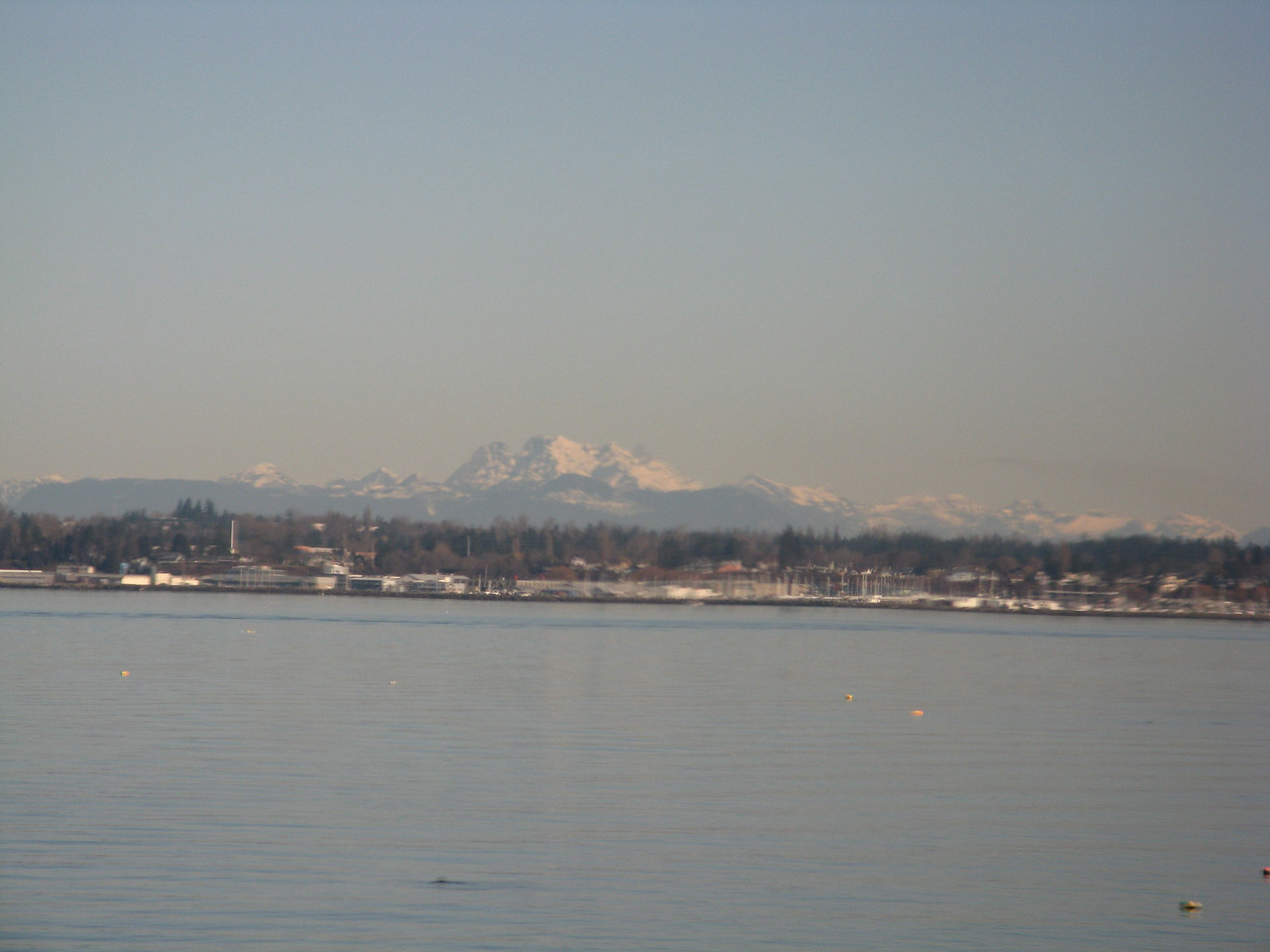 We can see Canadian snow capped mountains looking north across Bellingham Bay.
