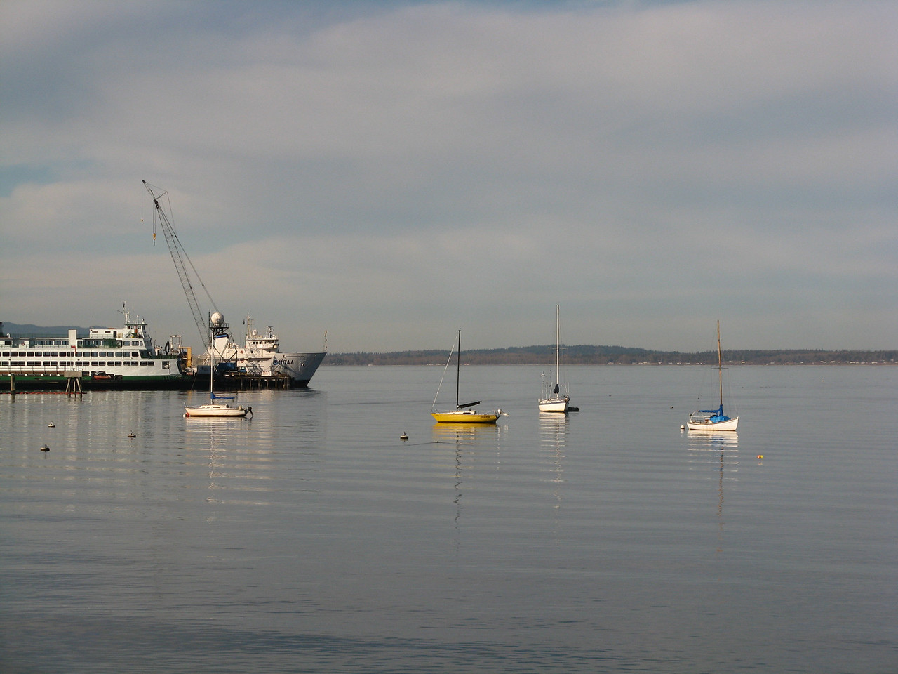 The bay near Bellingham.  The ferry appeared to be landed at a maintenance dock.