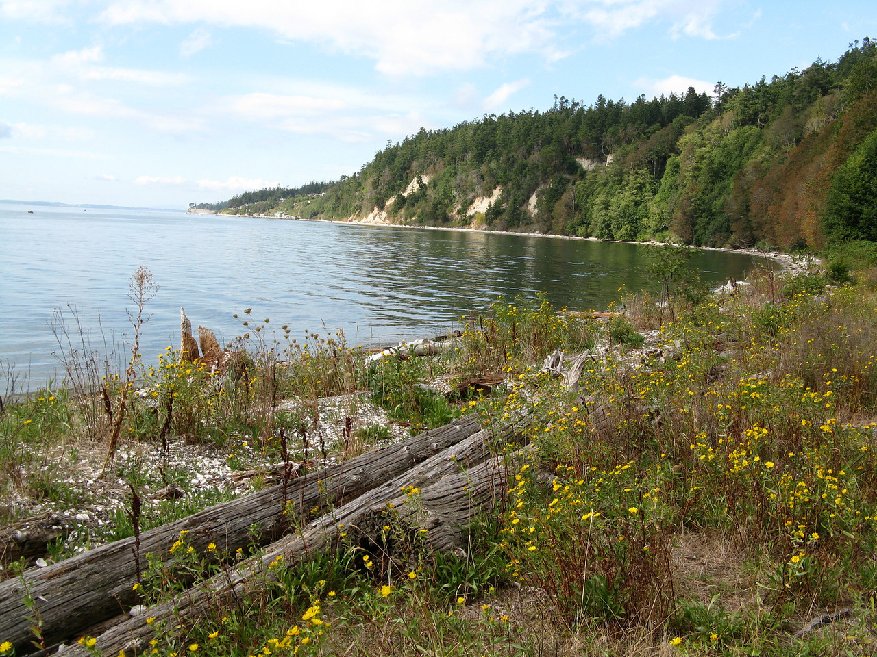 This view is looking north at the west shore of Camano Island.