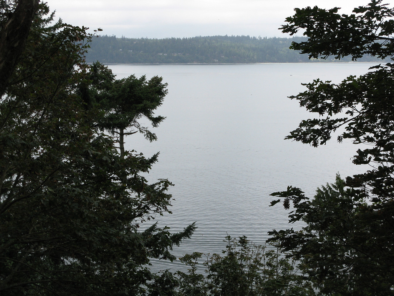 """We began hiking on the """"Bluff Trail"""" with occasional views like this one.  We are looking at the section of Puget Sound called Saratoga Passage, which sits between Whidbey Island (in the distance above) and Camano Island, on which we are standing."""