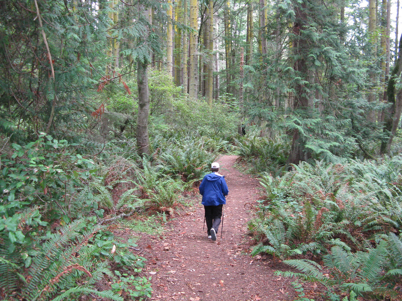 Hiking in the woods on the Bluff Trail.  This volkswalk was sanctioned as a seasonal event by the American Volksport Association.