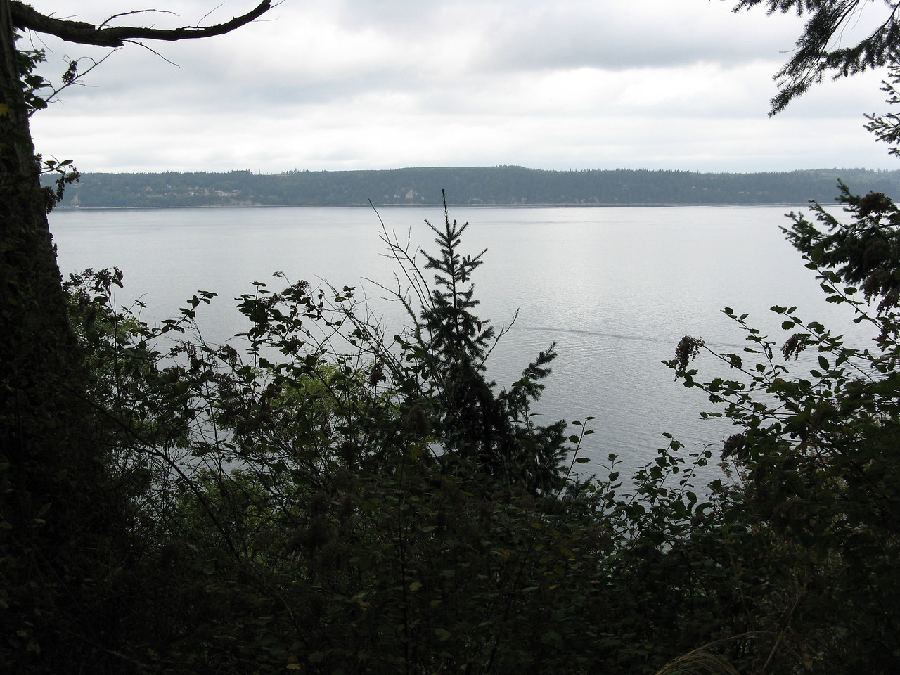 Whidbey Island in the distance and Saratoga Passage.