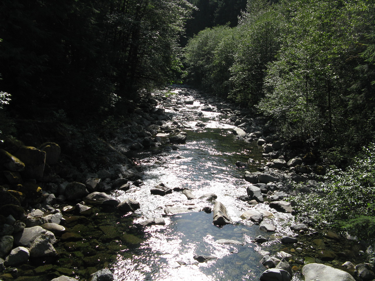 A downriver view of the Taylor RIver from the bridge at the trailhead.