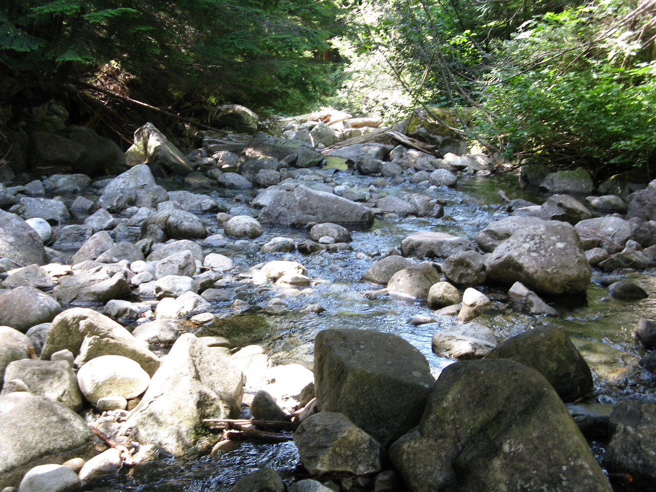 A downstream view of Big Creek on the other side of the bridge away from the falls.