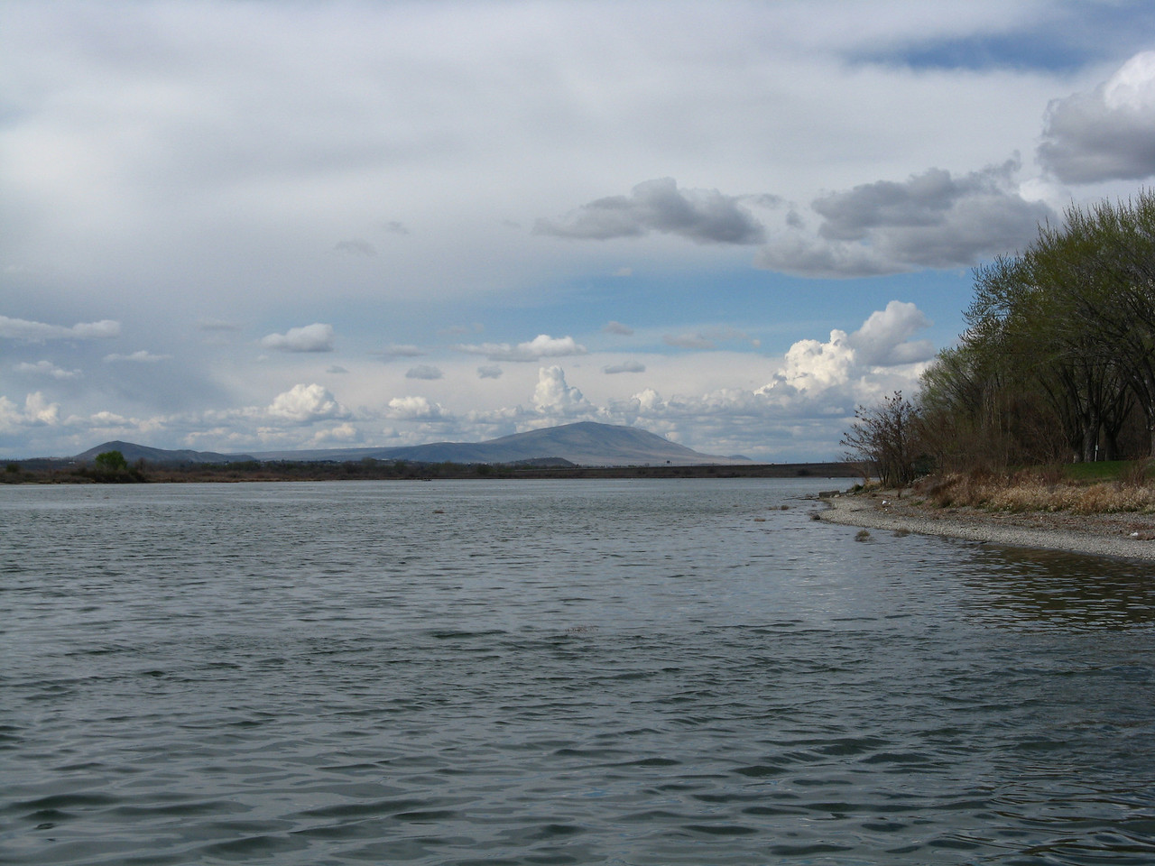 This view is looking upstream on the Columbia River near our turn around point.