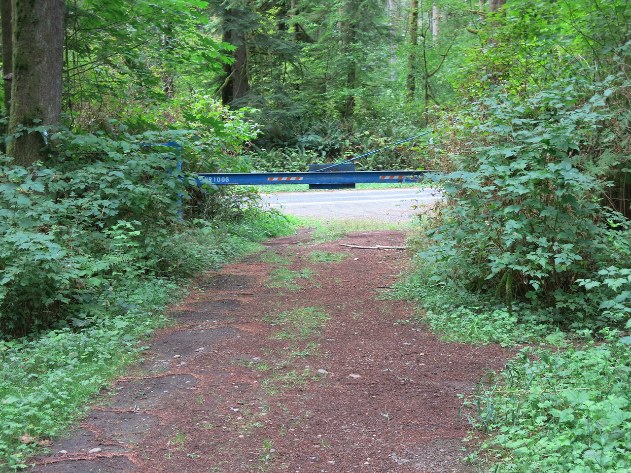 No sign to identify the trail.  Just this gate.