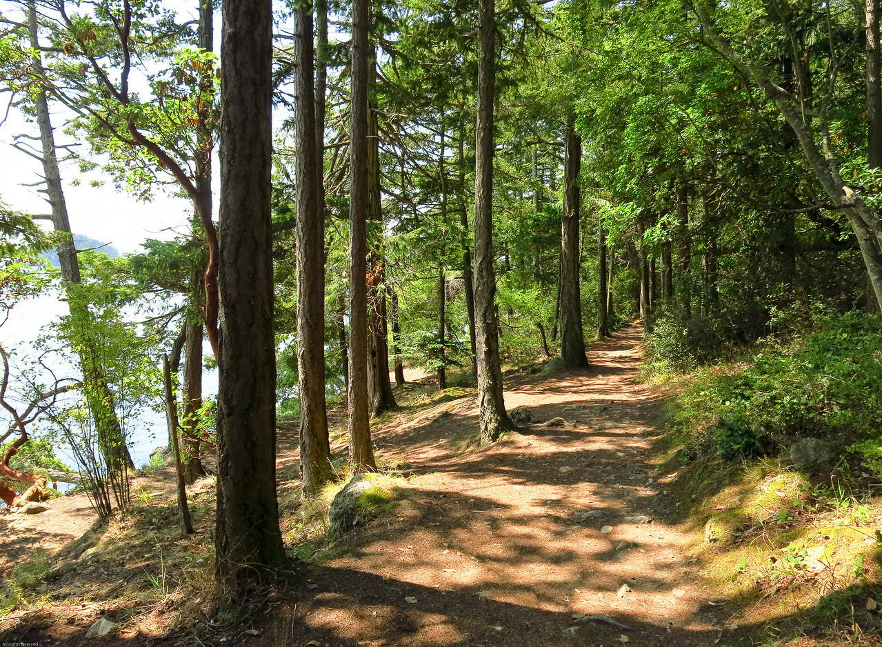 Enticing trail on Rosario Head