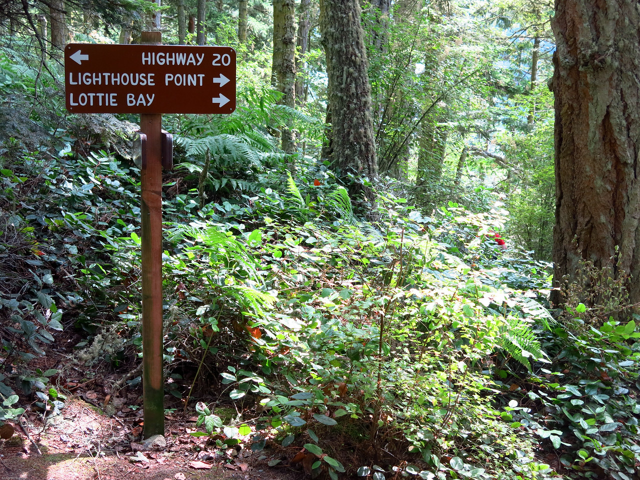 Trail intersection with the path to Highway 20 and the entrance to the park.