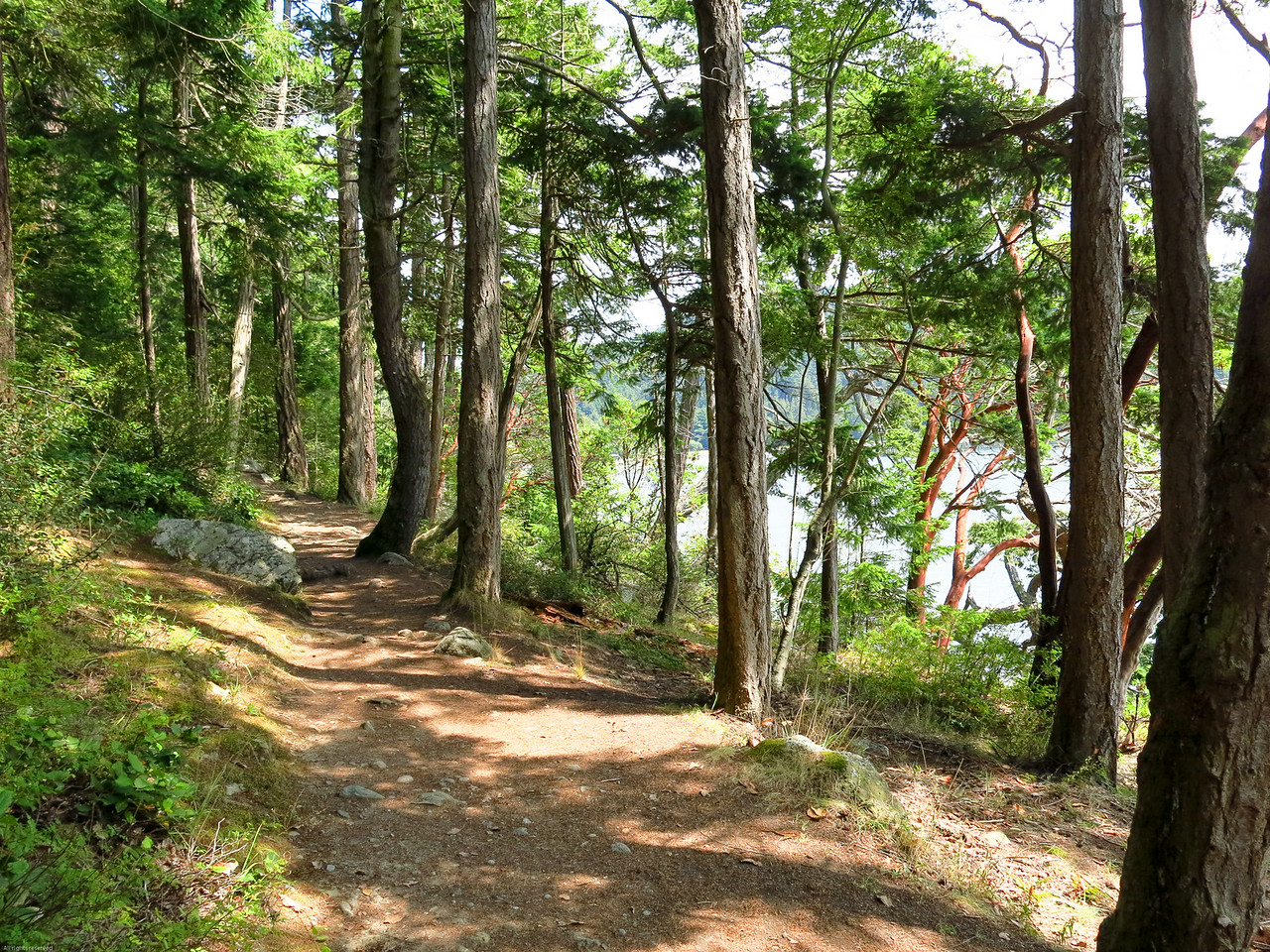 Inviting trail above Bowman Bay