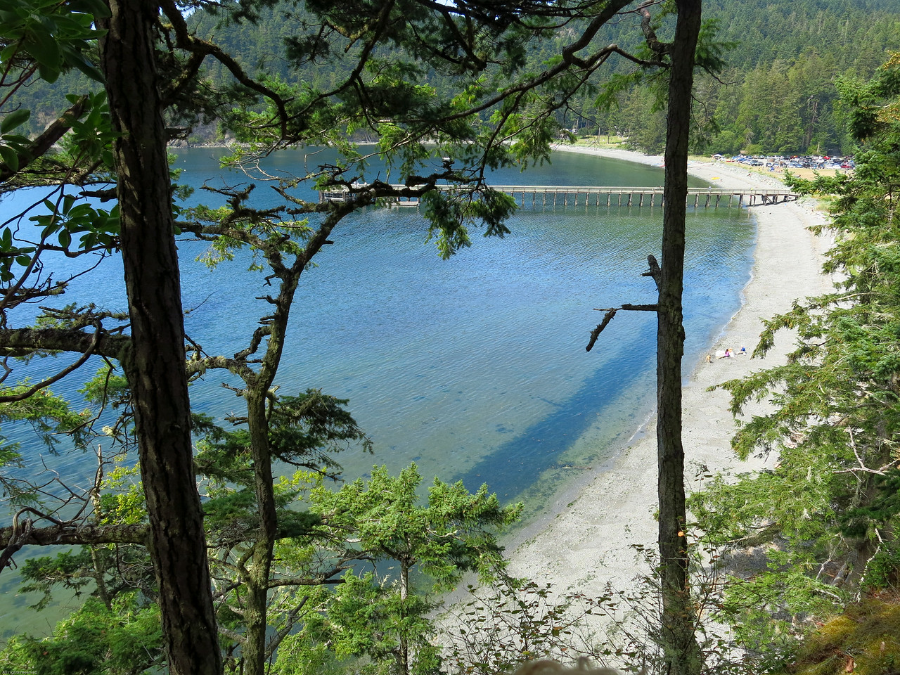 Bowman Bay from the trail to Lighthouse Point