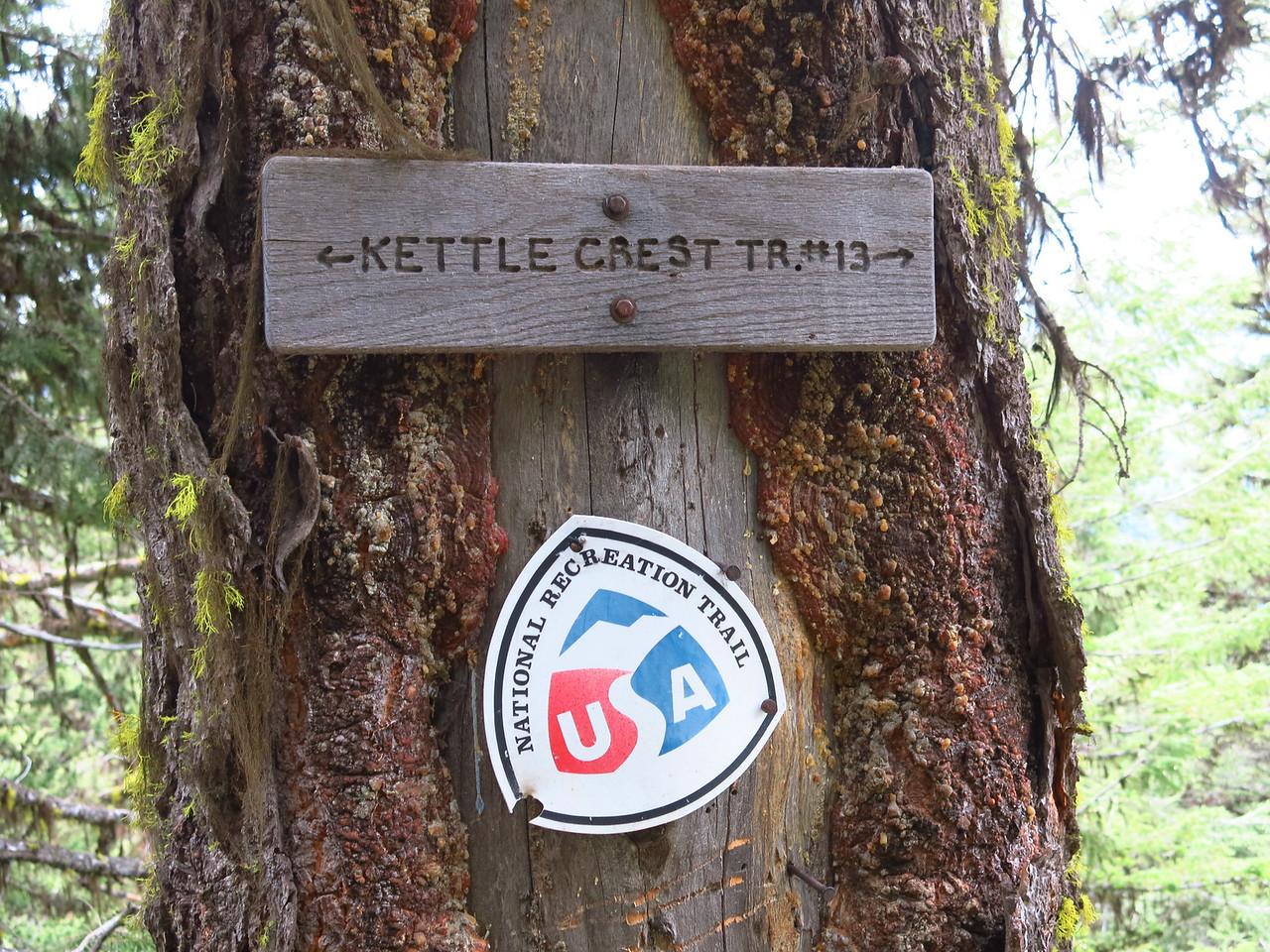 2014-06-26 KetlCrstN (69)