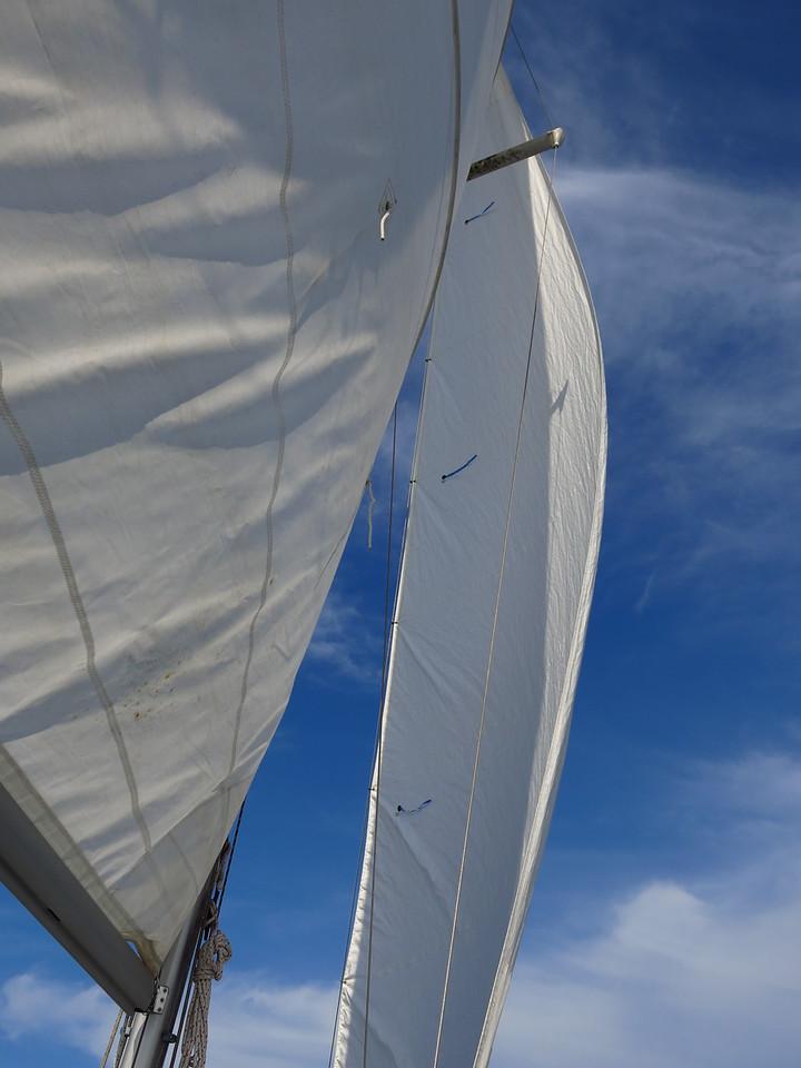 2015-08-02 Sail (19)