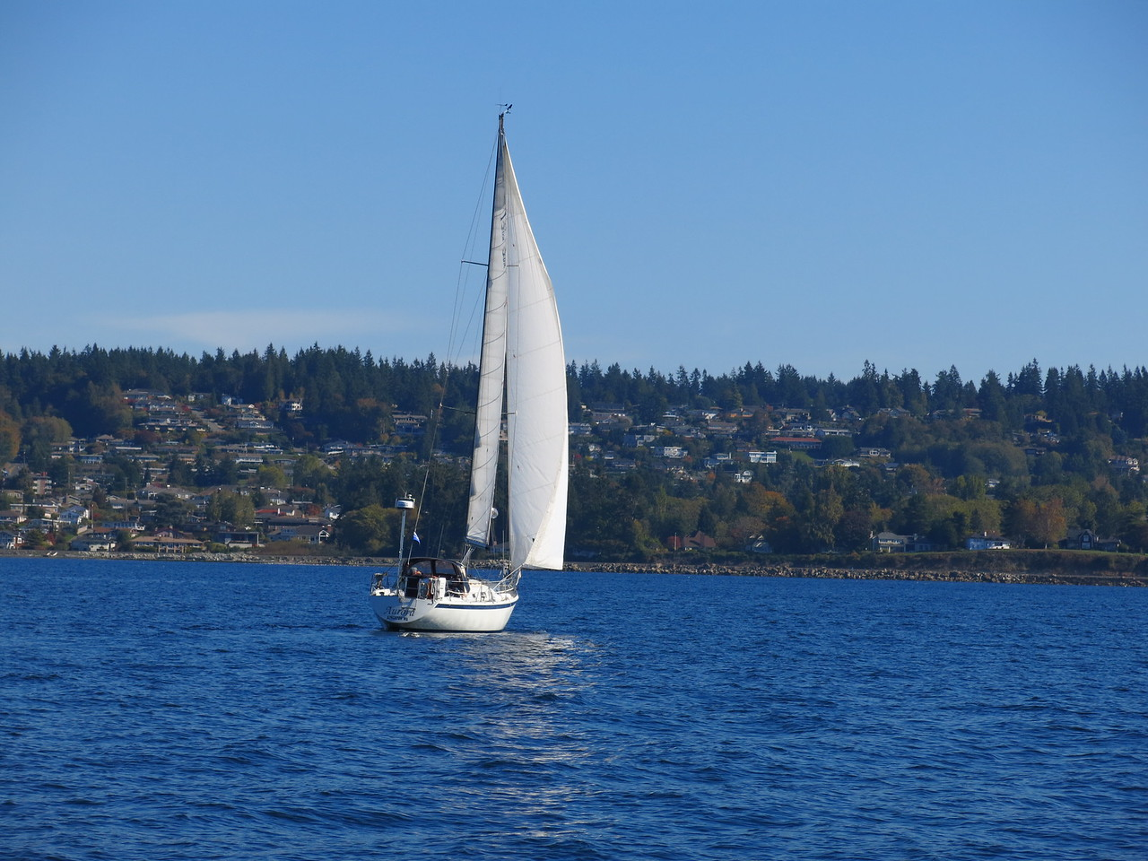 2015-10-04 Sail (31)