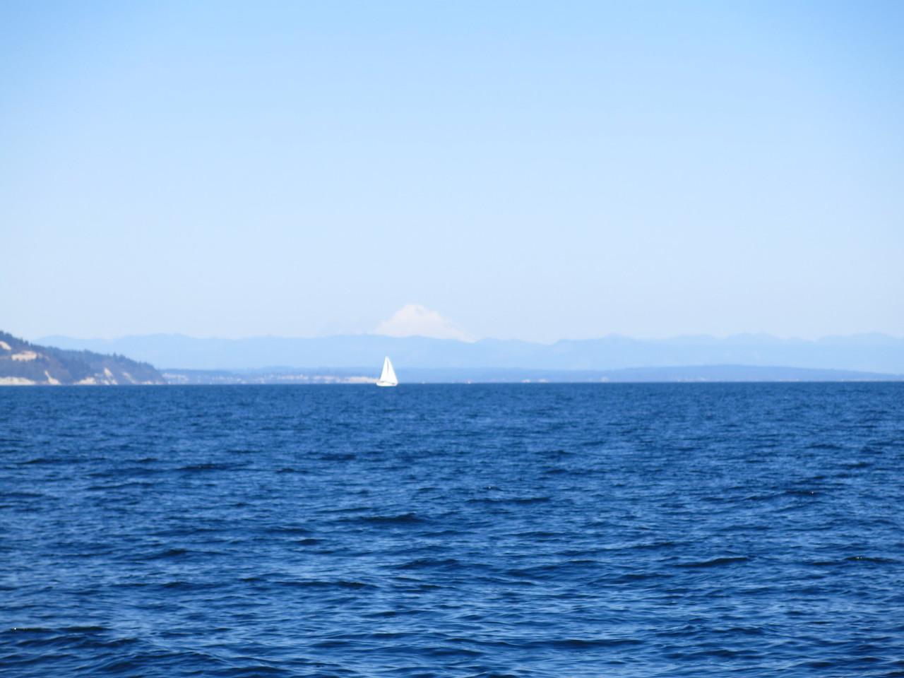 2015-10-04 Sail (8)