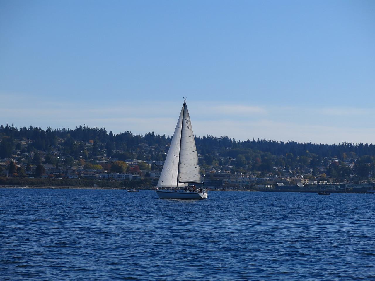2015-10-04 Sail (35)
