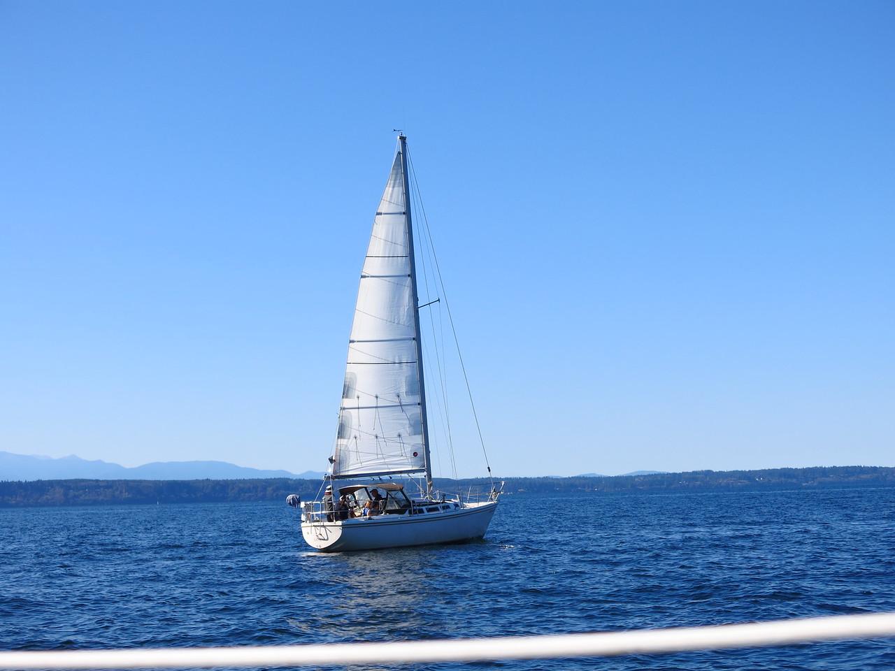 2015-10-04 Sail (25)