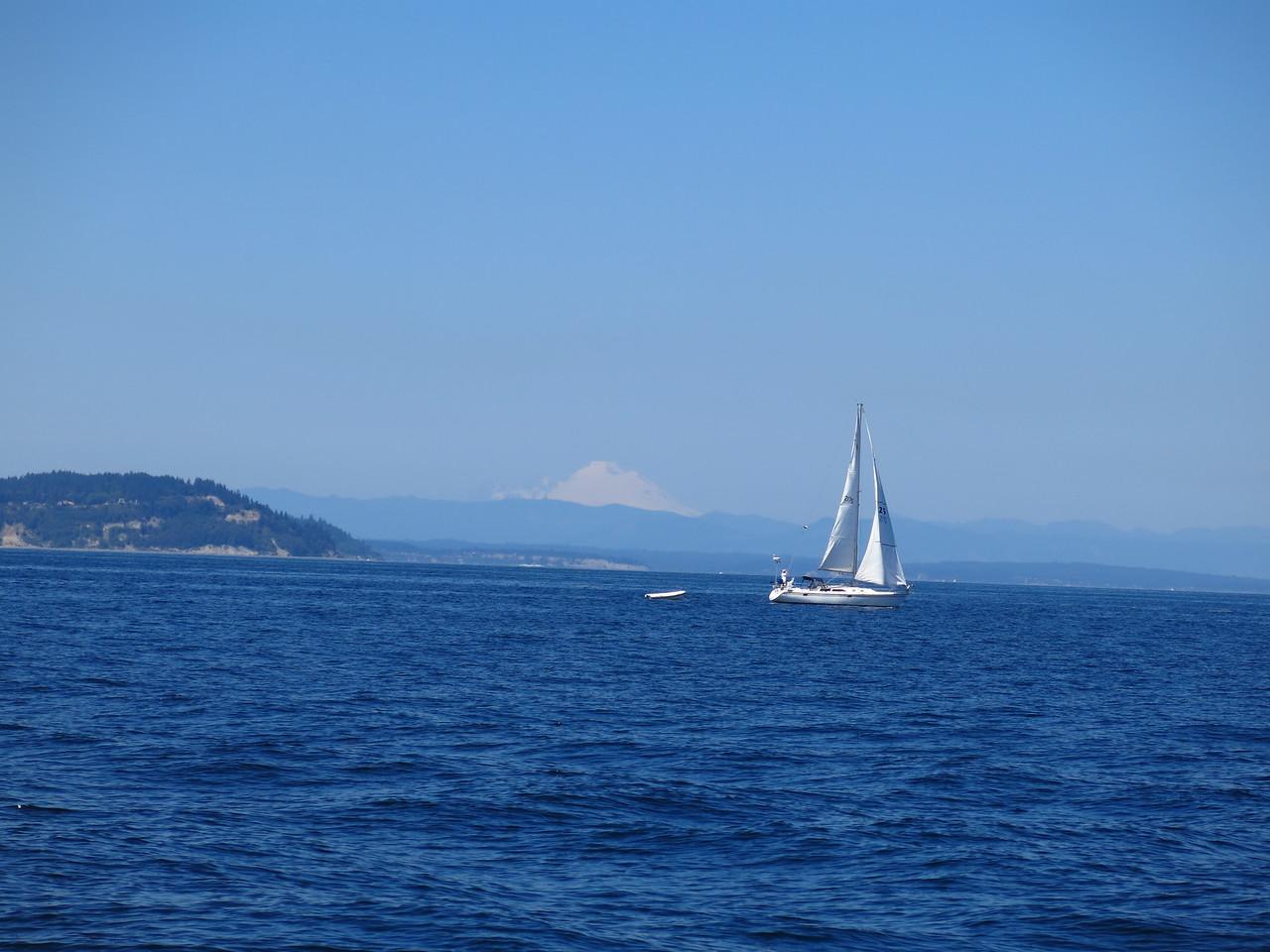 2015-07-03_Sail (14)