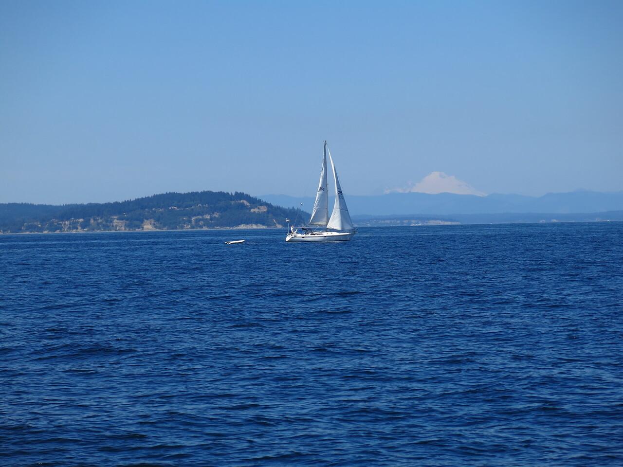 2015-07-03_Sail (11)