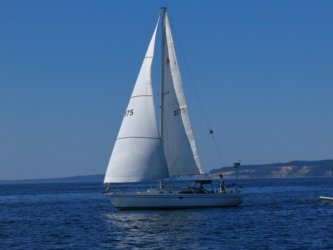 2015-07-03_Sail (17)