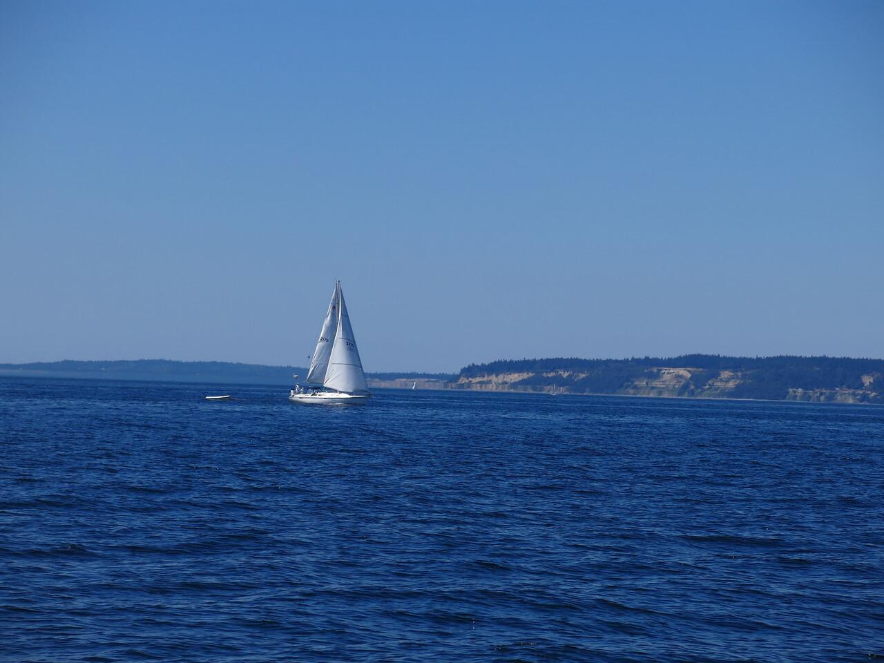 2015-07-03_Sail (7)
