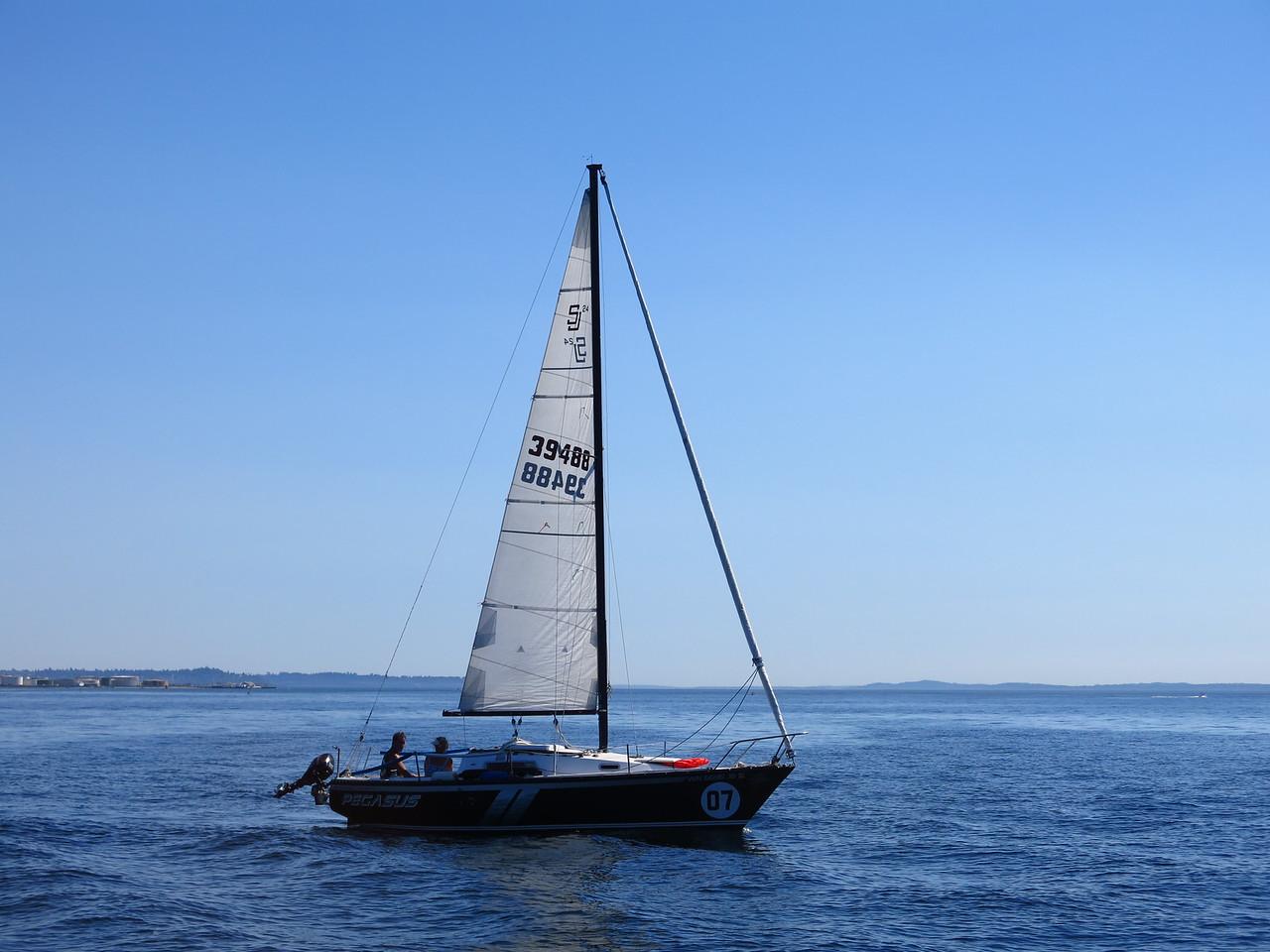 2015-07-03_Sail (27)