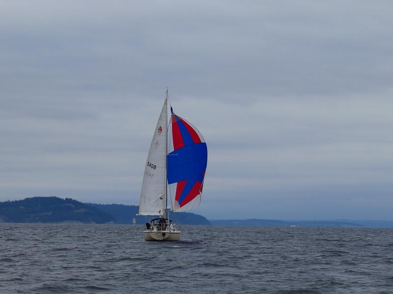 2015-05-25 sail (13)