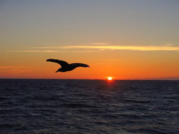 Sunset over the Strait of Juan de Fuca, Aug 15, 2017