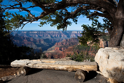 Have a seat on this old log bench and relax, enjoy the quiet and the view.