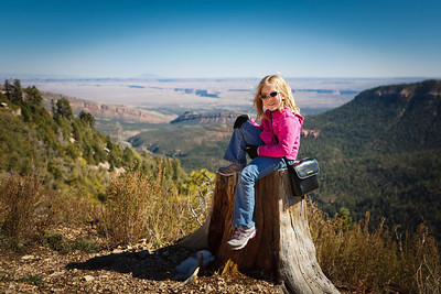 Lookout over Marble Canyon North Rim