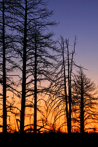 Sunset near N. Rim  Burned forest area