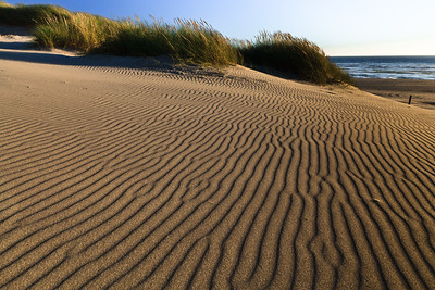 Sand Waves at Sand Lake Dunes