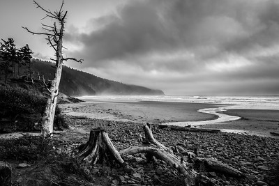 Cape Lookout State Park Beach in B & W
