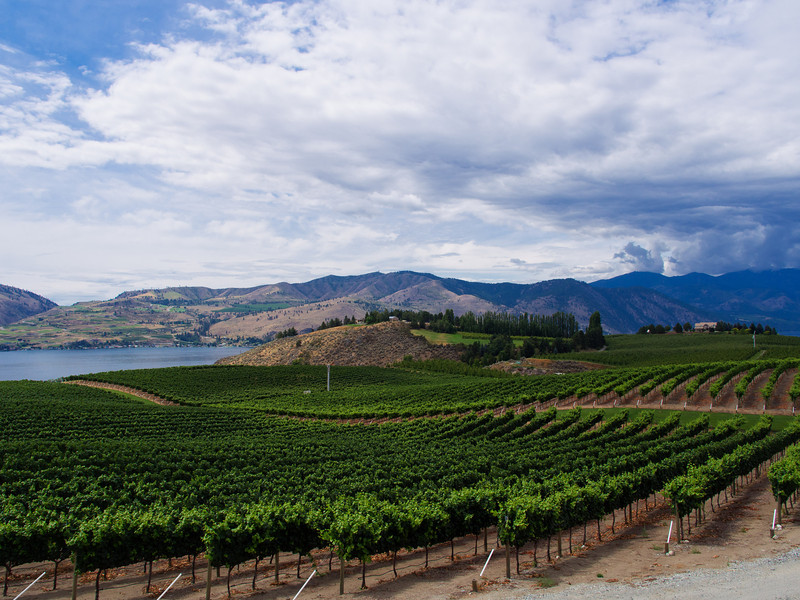 Winery, Lake Chelan, Washington