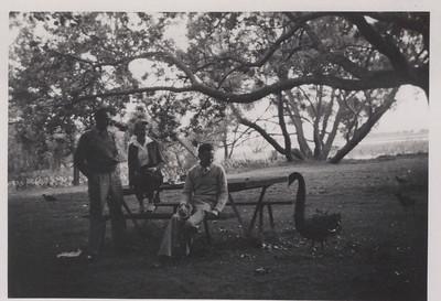 Ray, Mavis, Ron with Swan in Ballarat Gardens