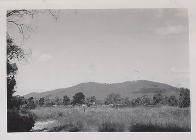 Mt Dandenong from Croydon