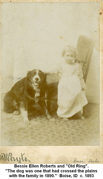 """Bessie Ellen Roberts and """"Old Ring"""".<br /> """"The dog was one that had crossed the plains<br /> with the family in 1890.""""  Boise, ID  c. 1893"""
