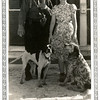 Reuben Reynolds and his new daughter-in-law<br /> Kathryn (Willsey).<br /> The dogs are Ben, left, and Shawn<br /> At his home, Hominy, OK Nov 1939
