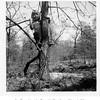 """Sue Reynolds at the Reynolds """"farm"""" near Skiatook, OK.<br /> 7 May 1952"""