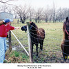 Melody Wood Richardson at the Wood farm.<br /> Ft. Scott, KS 1999