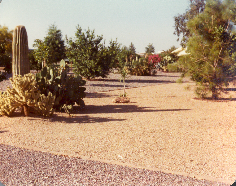 Frank and Bessie in Arizona 10